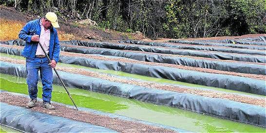 Filtros tratan aguas residuales de San Miguel de Sema (Boyacá), Fúquene y Susa (Cundinamarca).