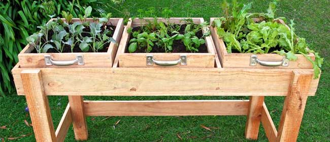 DIY garden bench  No room in the garden for salad greens or herbs? Build a standing 'garden bed' to have fresh greens on hand year-round. It's easy and inexpensive, yet the pay-offs are great. Position it close to the kitchen, on a sunny deck or patio, or right beside your vegetable garden.