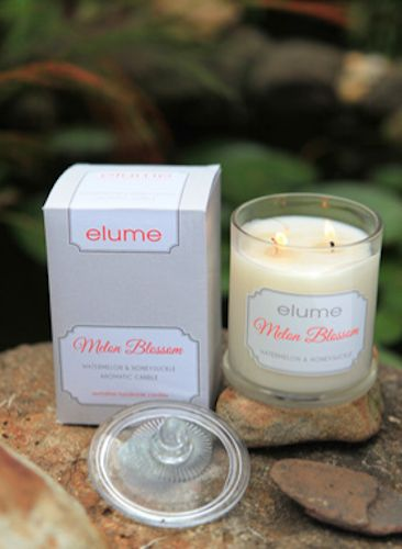 Melon Blossom - Watermelon & Honeysuckle    The cool, alluring scent of fresh morning dew and fruity aroma of papaya and watermelon combine evocatively when paired with the delicate floral perfume of honeysuckle buds and soft white musk revealing a lively and enchanting aroma.