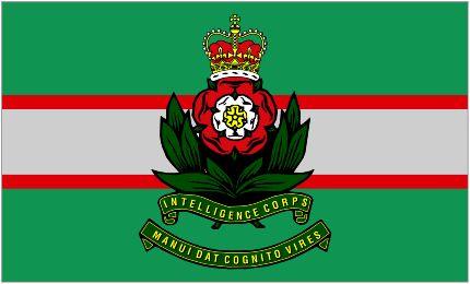 Image of Intelligence Corps Camp Flag