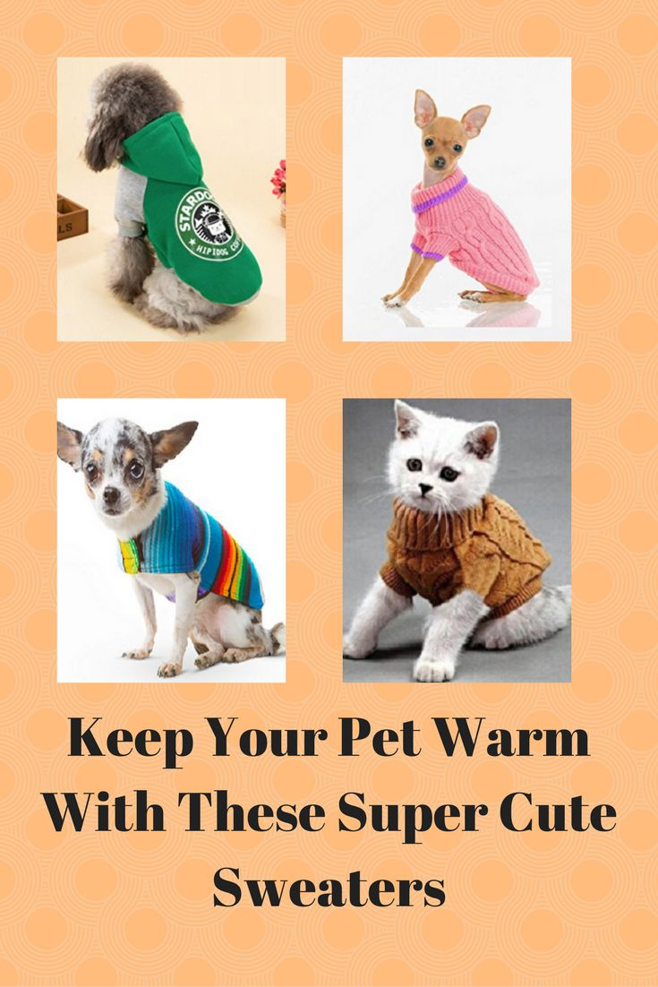 Best 25+ Dog winter coat ideas on Pinterest   Dog coats ...