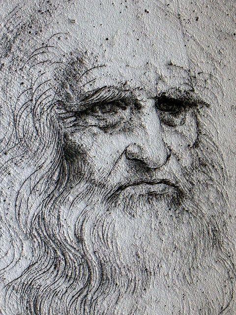 Leonardo da Vinci, self portrait. Este autorretrato expresa muchas emociones, por como se plasma el autor y lo que busca explicar con sus facciones, por lo mismo evoca sentimientos complejos hacia el observador, al tratar de determinar sus pensamientos. Da un punto de vista individual, al querer enseñar al maestro de todas aquellas maravillosas piezas de arte.