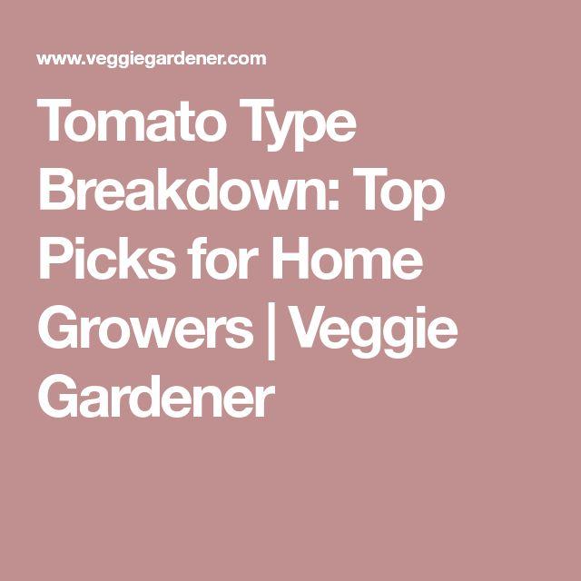 Tomato Type Breakdown: Top Picks for Home Growers | Veggie Gardener