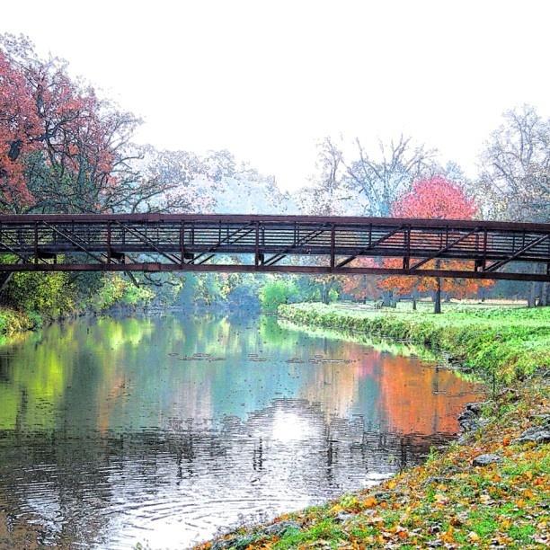 Footbridge Plans: How To Build A Footbridge Across A Creek