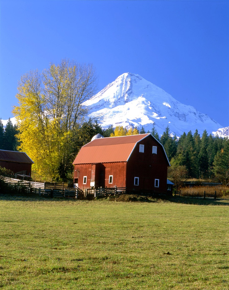 Fall in love with Hood River, OR: Favorite Places, Hoodriv Oregon, Beautiful Places, Gorge Scenic, Dreamy Places, Hoods Rivers, Beautiful Oregon, Red Barns, Hoods Oregon