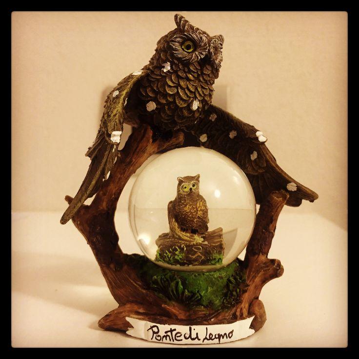 #PontediLegno #souvenir #owl #gufo