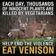 Funny Hunting Quotes Pleasing 93 Best Hunting Images On Pinterest  Hunting Stuff Deer And Hunting