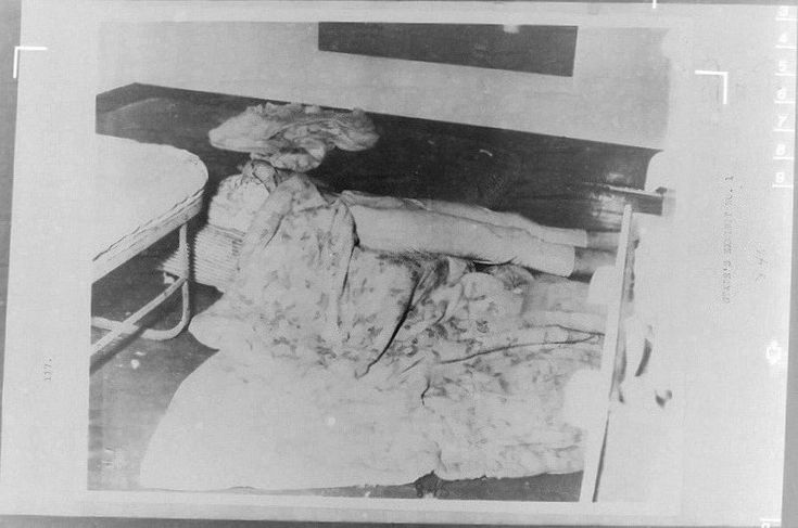 SYLVIA LIKENS THE COMPLETE PICTURE House Of Evil Book here! WARNING! Crime Scene Pics ! in The Sylvia Likens Case Forum