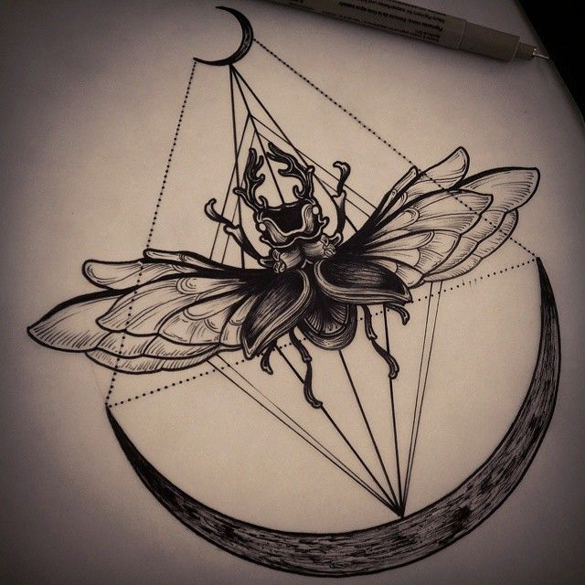 Beetle by Felipe Kross #tattoo #blackwork #illustration #beetle instagram: fetattooer