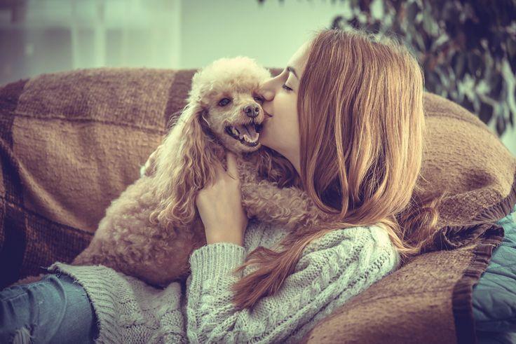 Koiralle+kannattaa+lässyttää,+toteaa+tutkimus