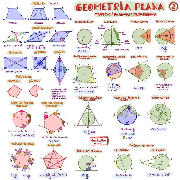 Resultado de imagem para mapa mental ecologia