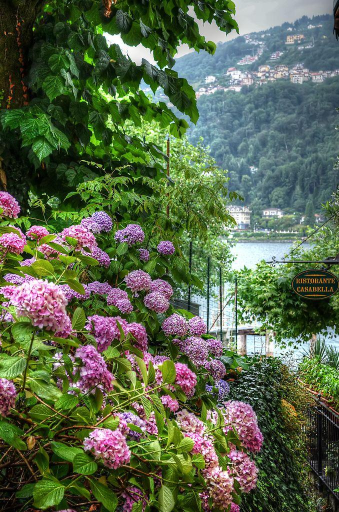 Stresa, Italy. (by Mento ITA.)