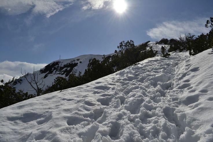Schneewanderung hinauf zum Heimgarten