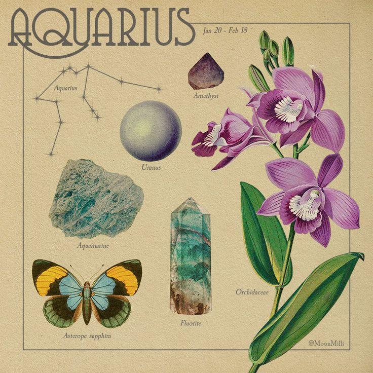 Zodiac Art, Astrology Zodiac, Zodiac Signs, Horoscope, Aquarius Zodiac, Sagittarius, Poster Wall, Poster Prints, Aquarius Aesthetic