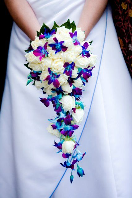 Tear drop bouquet of white roses & blue singapore orchids, with camellia leaves #weddings