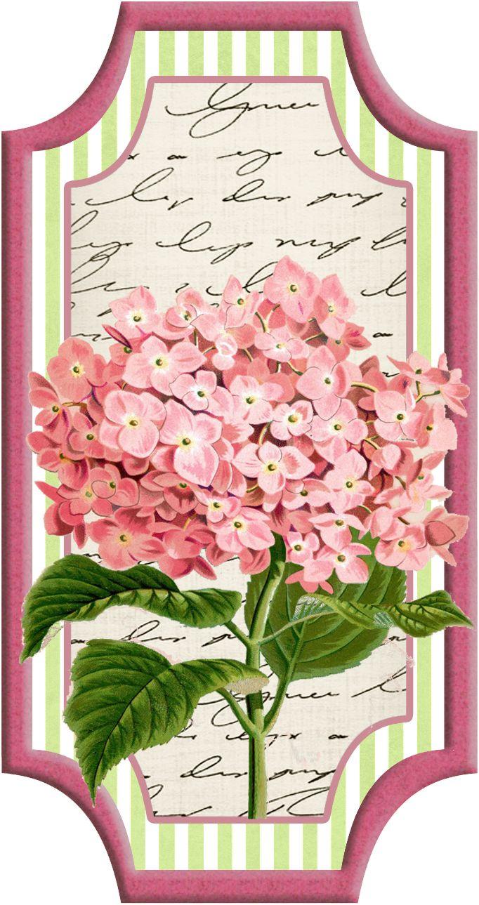 Digi stemple by AliceCreations: 46. Botanicznie :)