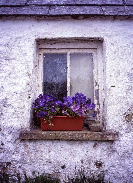 West Cork window by Daniel Owen https://www.facebook.com/IrelandOfAThousandWelcomes
