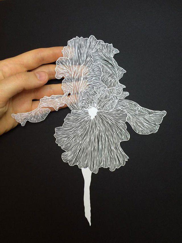 Plantes et animaux en papier découpé à la main avec un bistouri (galerie et vidéo)) | Etrange et Insolite