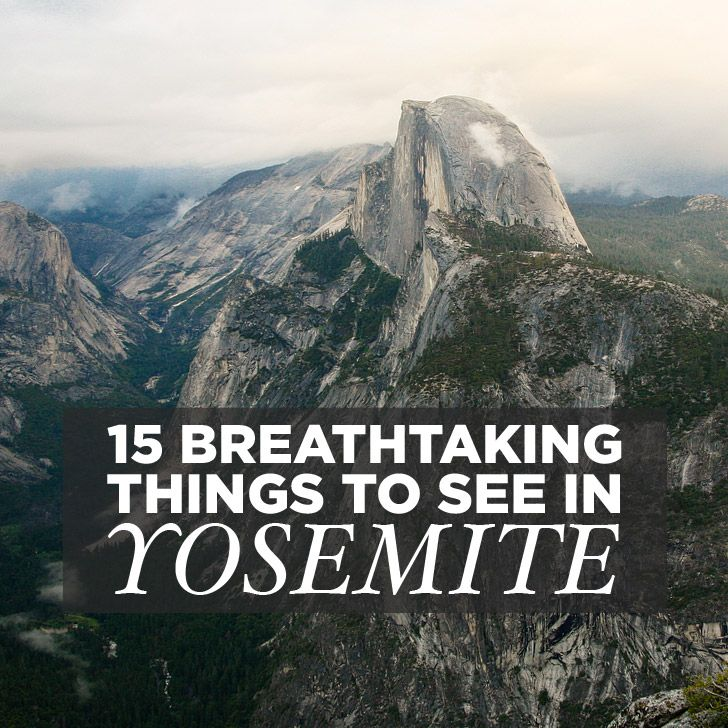 If you're planning a visit, here are 15 Breathtaking Things to do in Yosemite National Park. It's our fave park, and we've even talked about moving there. http://localadventurer.com/best-things-to-do-in-yosemite-national-park/?utm_campaign=coschedule&utm_source=pinterest&utm_medium=The%20Full-Time%20Tourist