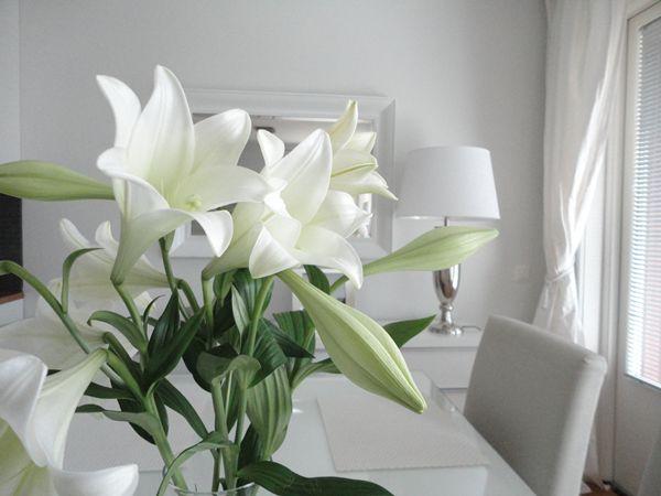 Lilies <3