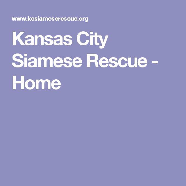 Kansas City Siamese Rescue - Home