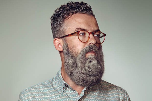 animal beards animal beard photos beard trend 2014 year of beard hipster beard hipster. Black Bedroom Furniture Sets. Home Design Ideas