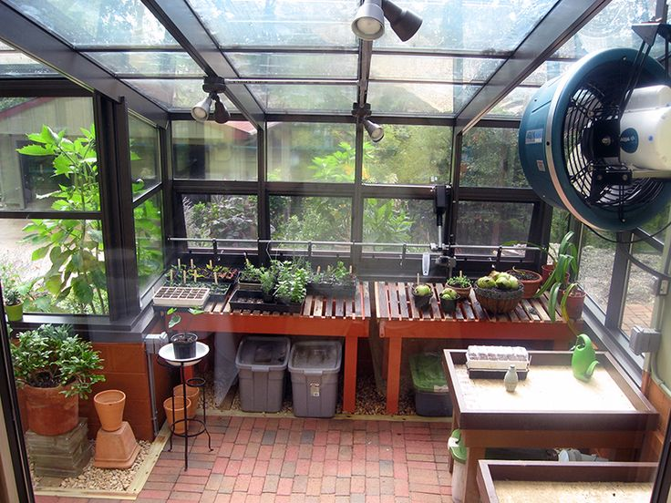 1000 Ideas About Greenhouse Kits For Sale On Pinterest
