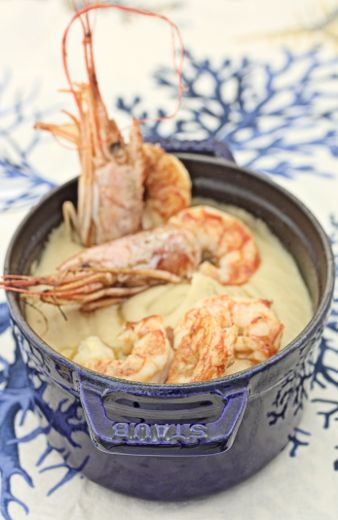 Crema di Ceci & Gamberoni / Cream of Chickpeas and shrimps