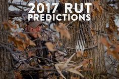 The 2017 Rut Predictions are in! Find out the best rut hunting dates for every theory out there. We dissect the moon, biological, and environmental factors of the rut.