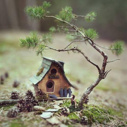 Facebook little tree