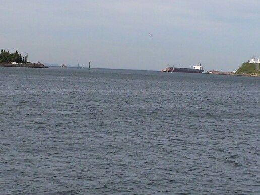 Tanker at Nobbys