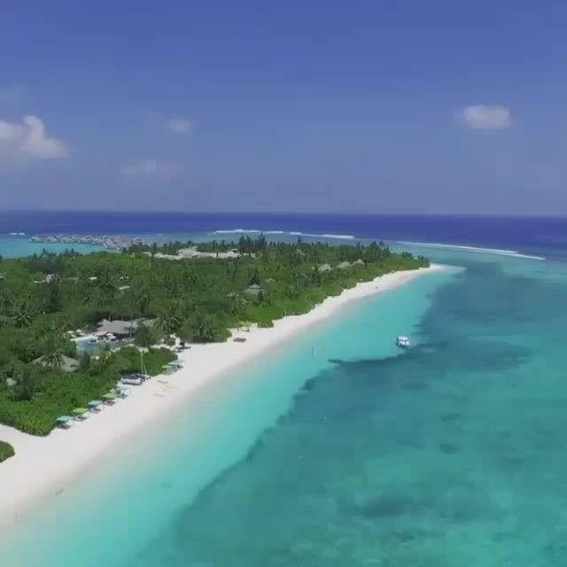 Promoção imperdível em Maldivas , exclusivo para hospedagem no Six Senses Laamu. Upgrade para meia pensão (válido para hospedagens de 01 de Outubro até 21 de dezembro de 2017 e reservas até 31 de Outubro de 2017). #sonhosa2 #sixsenseslaamu #viagem #trip #travel #viajar #honeymoon #luademel #amor #inlove #traveller #maldives #maldivas #asia #wedding #voltaaomundo #viagemexotica #bride #noivos2017 #noivos2018 http://gelinshop.com/ipost/1517696377882087371/?code=BUP8NCIjw_L