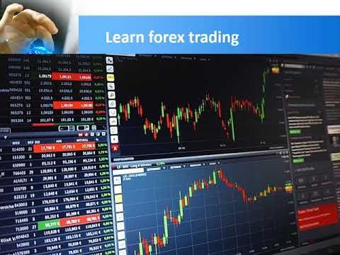 Get Forex Education For Beginners Experts Both Forex Trading