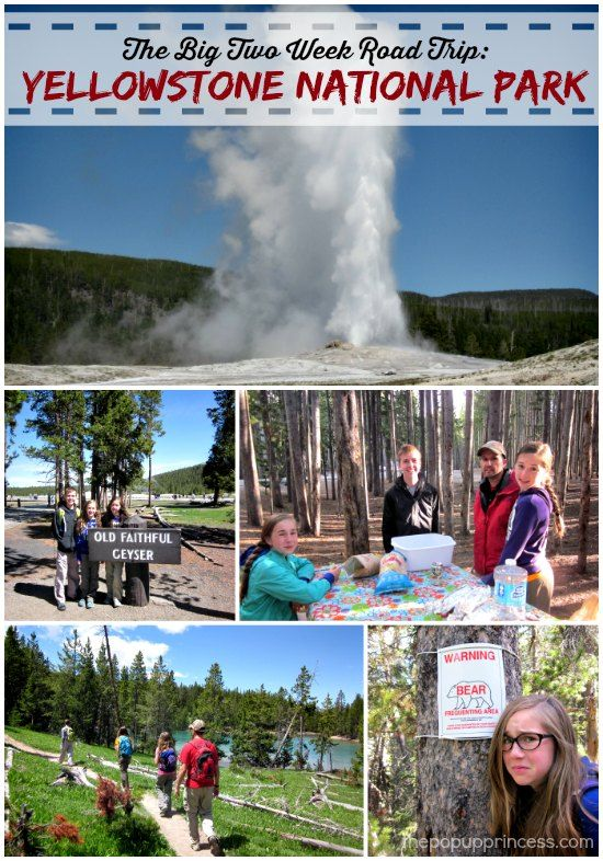 The Big Two Week Road Trip: Yellowstone National Park.  Here's our campground review of Canyon Campground in YNP.