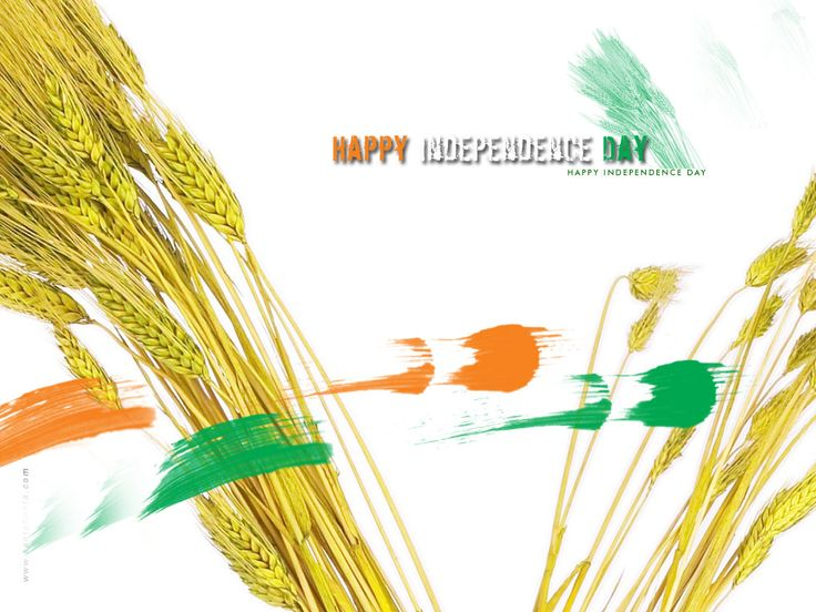 farmer-independence-day 15 August,Festivals,Independence Day,India HD Wallpaper,greeting cards,indian flag,indian heart  Motivational Quotes for India Download Free, Independence Day Celebration Wallpaper Happy Independence Day Wishes, Greetings, Ecards, Scraps, Thoughts, Sayings