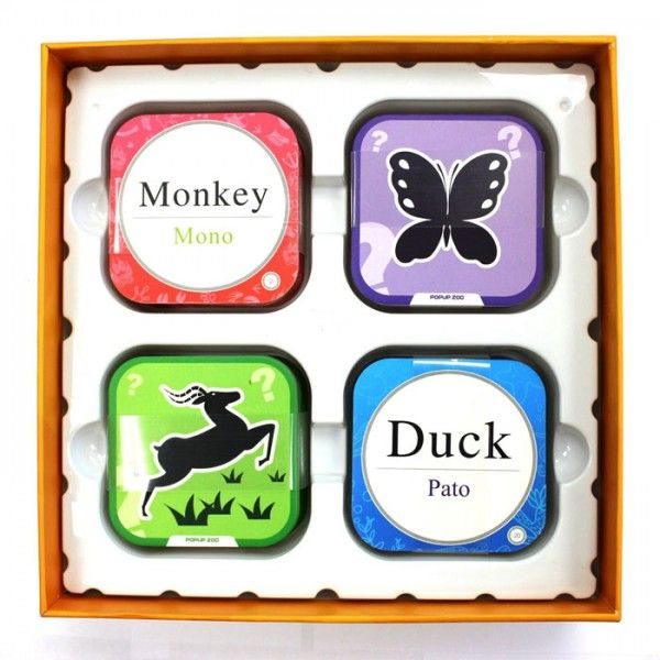 Pop Up Zoos : Best images about pop up zoo d flashcards on pinterest