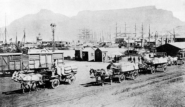 The Cape Town Docks during the late 1880s