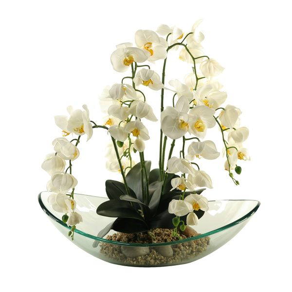 D&W Silks Cream Phael Orchids in Large Glass Bowl