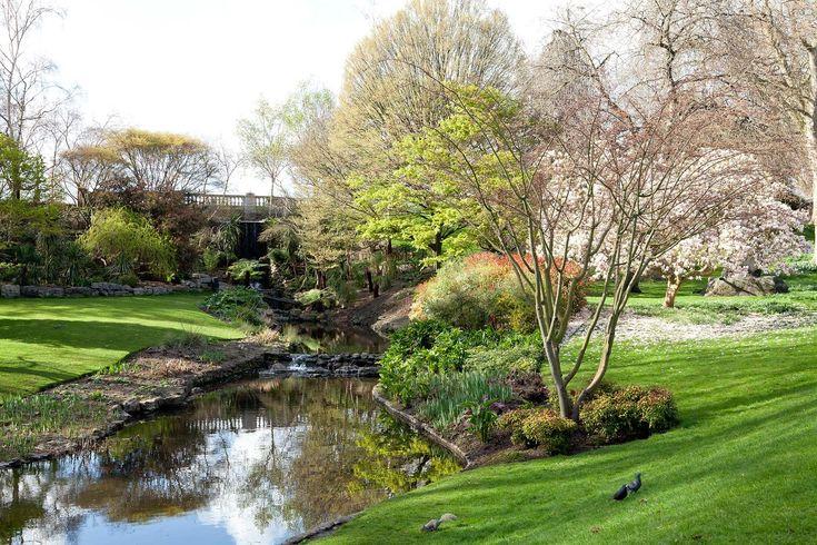 Neighborhood: Hyde Park