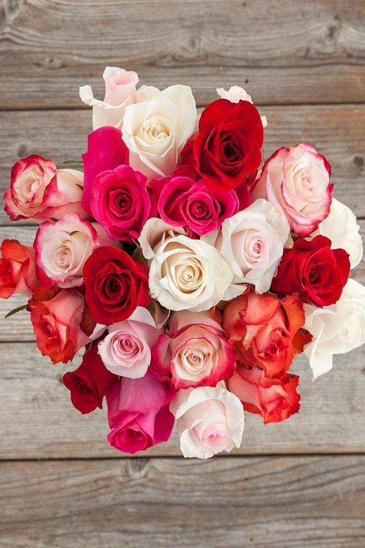59 best flowers images on pinterest fresh flowers flower 50 shades of roses for your sweetheart make this valentines day the most special one flower bouquets50 dhlflorist Choice Image