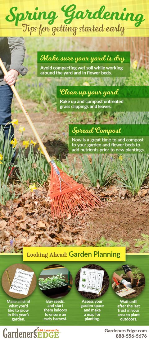 Spring Gardening   Tips For Getting Started Early. Yard And Garden Clean Up  Is Important