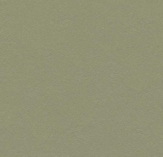 3355 rosemary green
