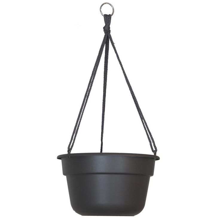 Plastic Hanging Baskets For Plants: The 25+ Best Plastic Hanging Baskets Ideas On Pinterest