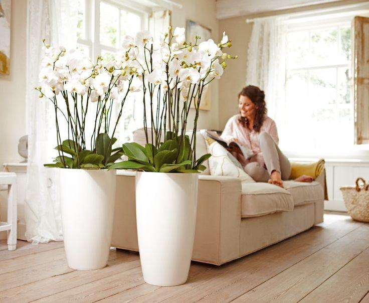 Pot de fleurs haut et rond blanc - Jardin et Saisons