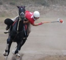 #polocrosse this is why my sport is better than yours