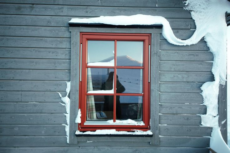 SVALBARD : Au nord du cercle polaire arctique...#SVALBARD #NORVEGE #OURSPOLAIRE #NORWAY #window