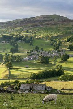 Yorkshire Dales. England.
