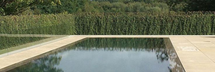 Constructeur piscines | Pisciniste | Piscine béton armé