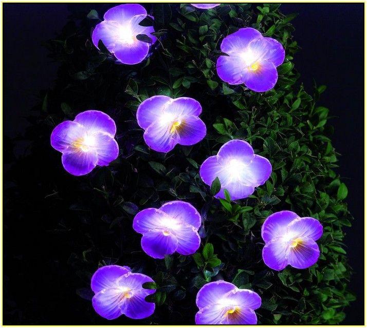 Solar Powered Garden Lights Flowers