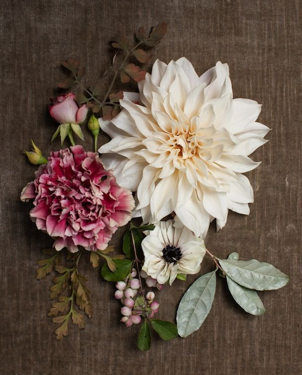 Nicolette Camille Floral Design | Camille Styles